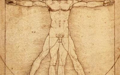 Human Body Cross-words